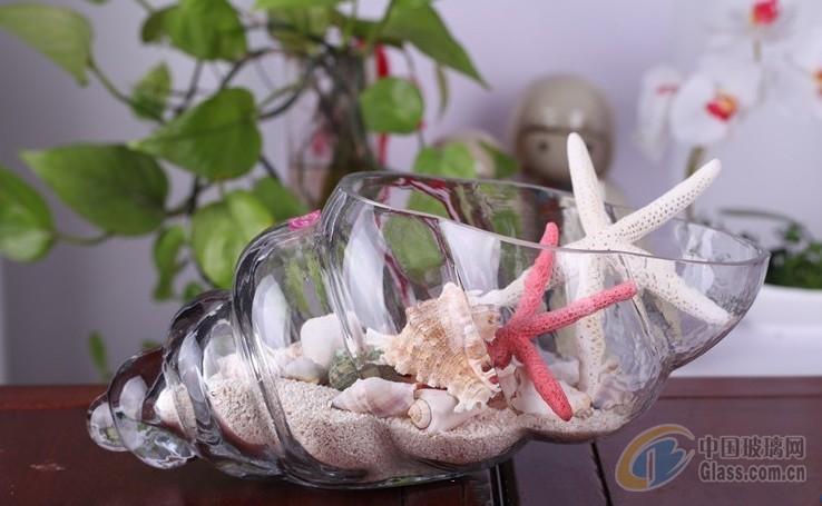 玻璃透明水培花瓶 海螺造型