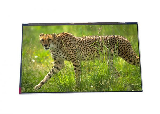 1024x600_hydis_7_0_inch_tft_lcd_panel_hv070ws1_g00_for_voip_phone_????.jpg