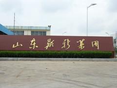山东鼎新电子玻璃集团有限公司