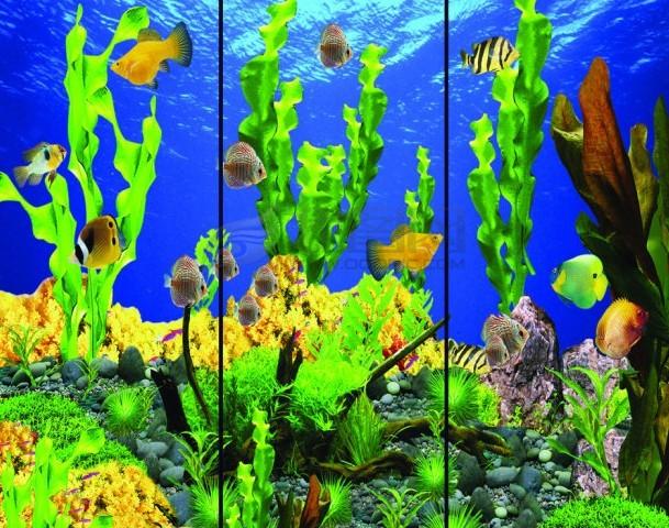 优质玻璃鱼缸指导价 优质玻璃鱼缸厂商 优质玻璃鱼缸厂商 ...