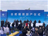 全球最大硅基OLED廠商——合肥視涯建成投產