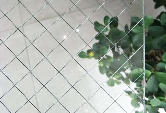 雙光面夾絲玻璃