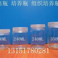 组培瓶,兰花组培瓶,铁皮石斛组培瓶,耐高温培养瓶,组培容器