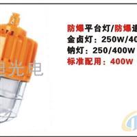 ODBE6017防爆道路平台灯