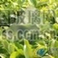 天津3.2mm太阳能钢化玻璃价格