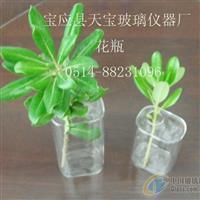 玻璃花瓶花插|玻璃花瓶