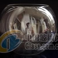 玻璃瓶圆花瓶