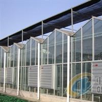供应温室玻璃