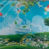 茶水柜钢化玻璃,河北沙河市星耀钢化玻璃厂 ,家具玻璃,发货区:河北 邢台 沙河市,有效期至:2015-12-10, 最小起订:100,产品型号: