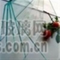 沙河东明供应钢化玻璃