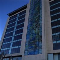 彩色艺术玻璃幕墙