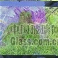 AG玻璃无反射防眩玻璃蒙砂粉