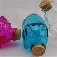 玻璃瓶储蓄罐工艺品瓶