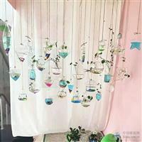 创意悬挂透明玻璃水培花瓶