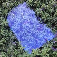 绿色包围AR玻璃 99%高透超清司机包围AR玻璃厂