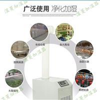 超声波加湿器和普通加湿器相比的优势与不同