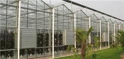 秦岭国家植物园温室幕墙工程设计项目招标公告