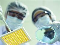国内5.0医药玻璃项目魏县投产