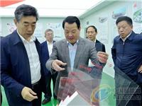 邓向阳调研凯盛集团超薄玻璃基板生产线