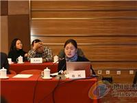国家标准《轻质晶体硅光伏夹层玻璃》标准审查会在京召开