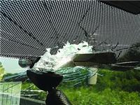 汽车风挡玻璃刮花了怎么办  汽车玻璃的成分与种类