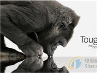 什么是大猩猩玻璃  什么是钢化玻璃