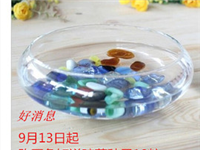 玻璃花盆如何种多肉植物  玻璃花盆哪种材质更透明