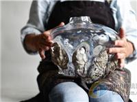 康宁玻璃博物馆展出全球当代玻璃产品