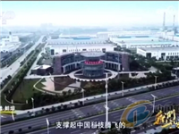蚌埠成功生产0.12毫米超薄电子触控玻璃