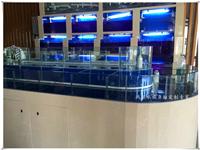 玻璃鱼缸寿命一般是多久  玻璃鱼缸如何挑选玻璃胶