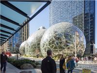 亚马逊玻璃圆球建筑内含300种热带雨林植物