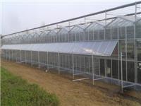 玻璃温室有什么优点  玻璃温室该怎么通风换气