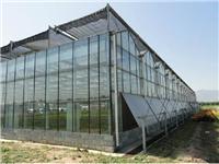 玻璃温室大棚有什么特点  玻璃温室该怎么升温加热