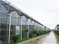 玻璃温室的主要结构特点  玻璃温室的常用加温方法