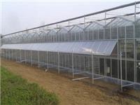 玻璃温室基础用材的特点  玻璃温室该怎样通风换气