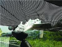 玻璃表面裂缝怎样来修复  挡风玻璃裂缝修复的要点