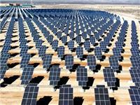 荷兰太阳能发电量同比增长50%