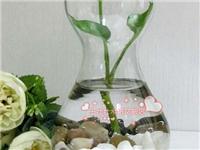 玻璃花瓶该怎么制作  玻璃花瓶做家庭装饰好不好