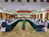 《离子性中间膜》团标讨论会在广东东莞召开