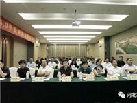 中国首条硼硅4.0防火玻璃新材料生产线科技成果发布暨论坛在邢台举行