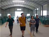 贵州省建材联合会考察调研安顺市玻璃行业