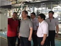 沙河:市委书记刘果芳调研玻璃深加工