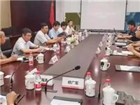 成都市委书记胡湘之考察中建材碲化镉弱光发电玻璃生产线项目