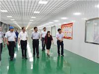 凯盛科技集团李志铭到龙海玻璃调研