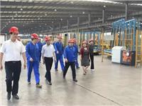 凯盛科技集团领导到龙昊玻璃调研