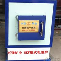 供应兴强牌最新技术箱式电阻炉