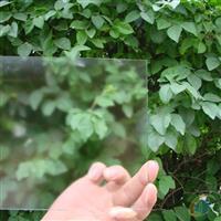 供应低反射玻璃