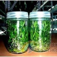 北京400毫升菌种瓶
