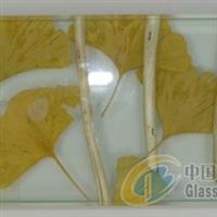 湿法夹胶玻璃植物夹胶玻璃