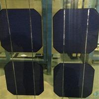 8+8双玻太阳能组件